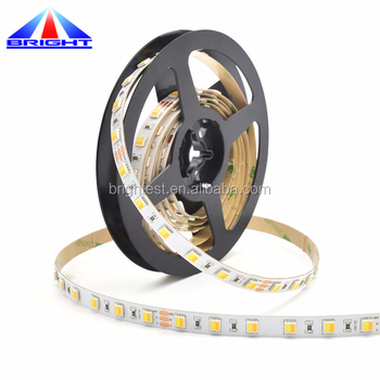 CCT Adjustable DC12V warm white and white 2 in 1 bicolor 5050 color temperature changing led strip with remote controller kit