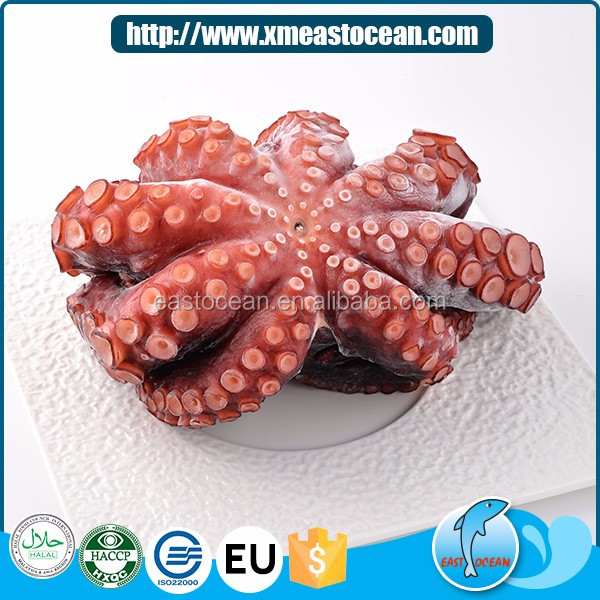 Frozen fresh seafood wholesale octopus vulgaris cooked whole
