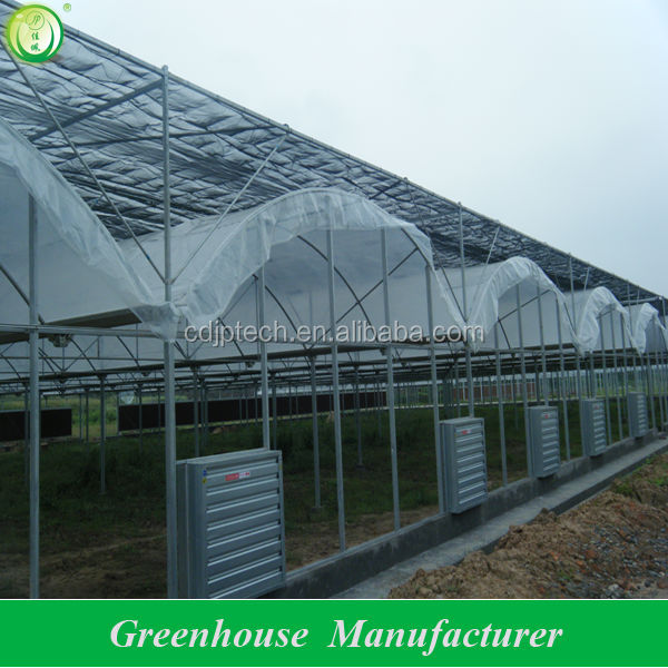 greenhouse for vegetable used