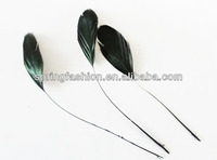 Good quality rooster feather,stripped coque feather