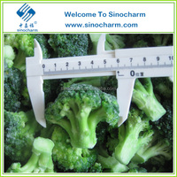 Importers of frozen fruit and vegetable, Frozen Broccoli Price