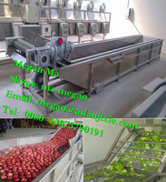 Bubble fruit and vegetable cleaning machine/vegetable and fruit washing machine