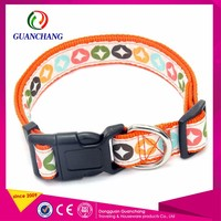Protective Pet Martingale Personalized Dog Training Collar