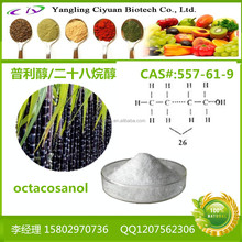 Factory Supply Pure Policosanol Octacosanol Sugarcane Extract