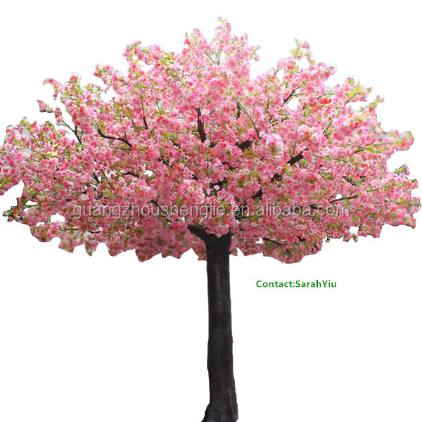 Artificial Plants. We Offer Silk Trees And Silk Plants For The Home ...