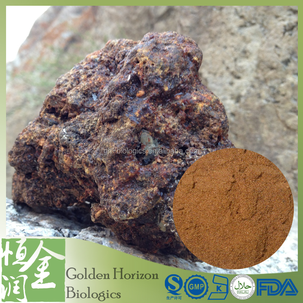 Excellent Shilajit Extract 10:1 Powder