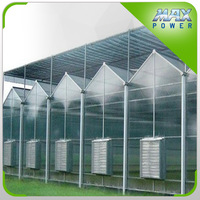 Modern Long life Greenhouse For Commercial Planting Growing