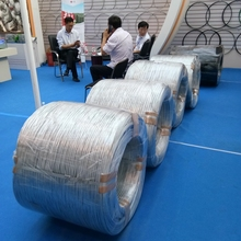 (bwg 14,bwg16,bwg18,bwg20,bwg22) electric galvanized iron wire ( Anping factory )