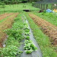 Soil protective prevent weeding weed control fabric used for agriculture