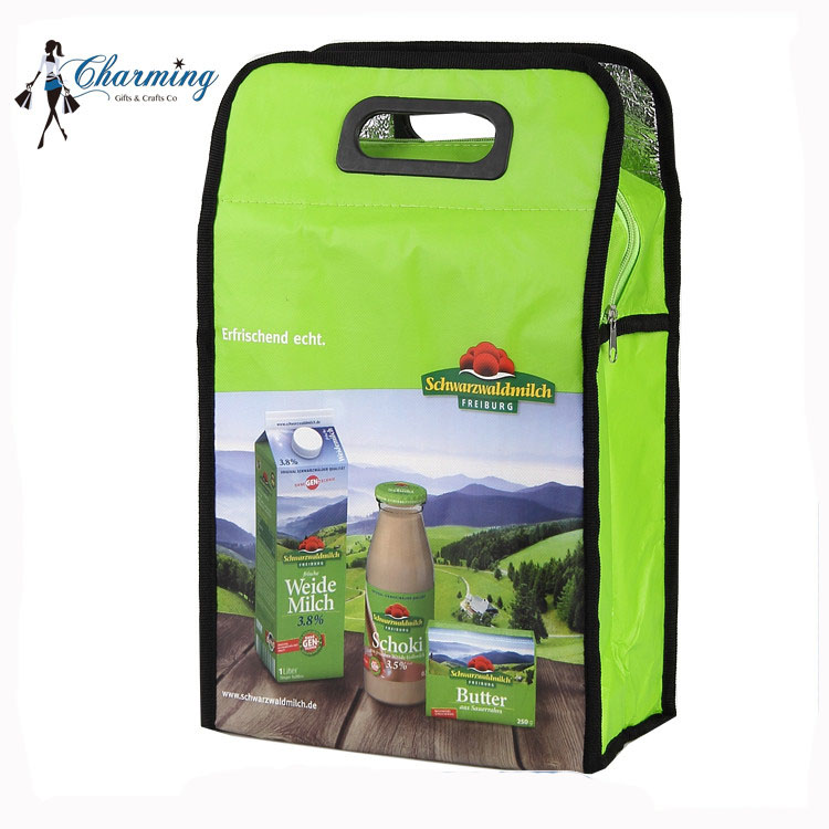 2017 hot selling promotional insulated lunch cooler bag for frozen food