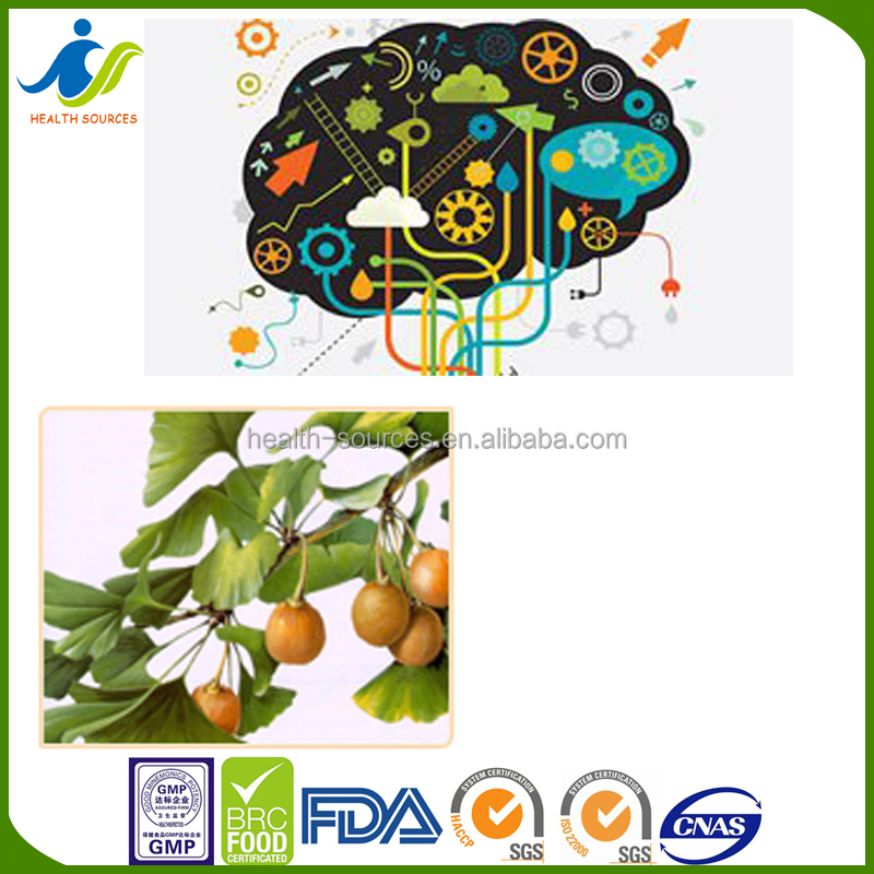 Chinese supplier herbal extract Ginkgo Biloba extract