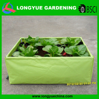 Hot selling flat plastic mushroom grow bags