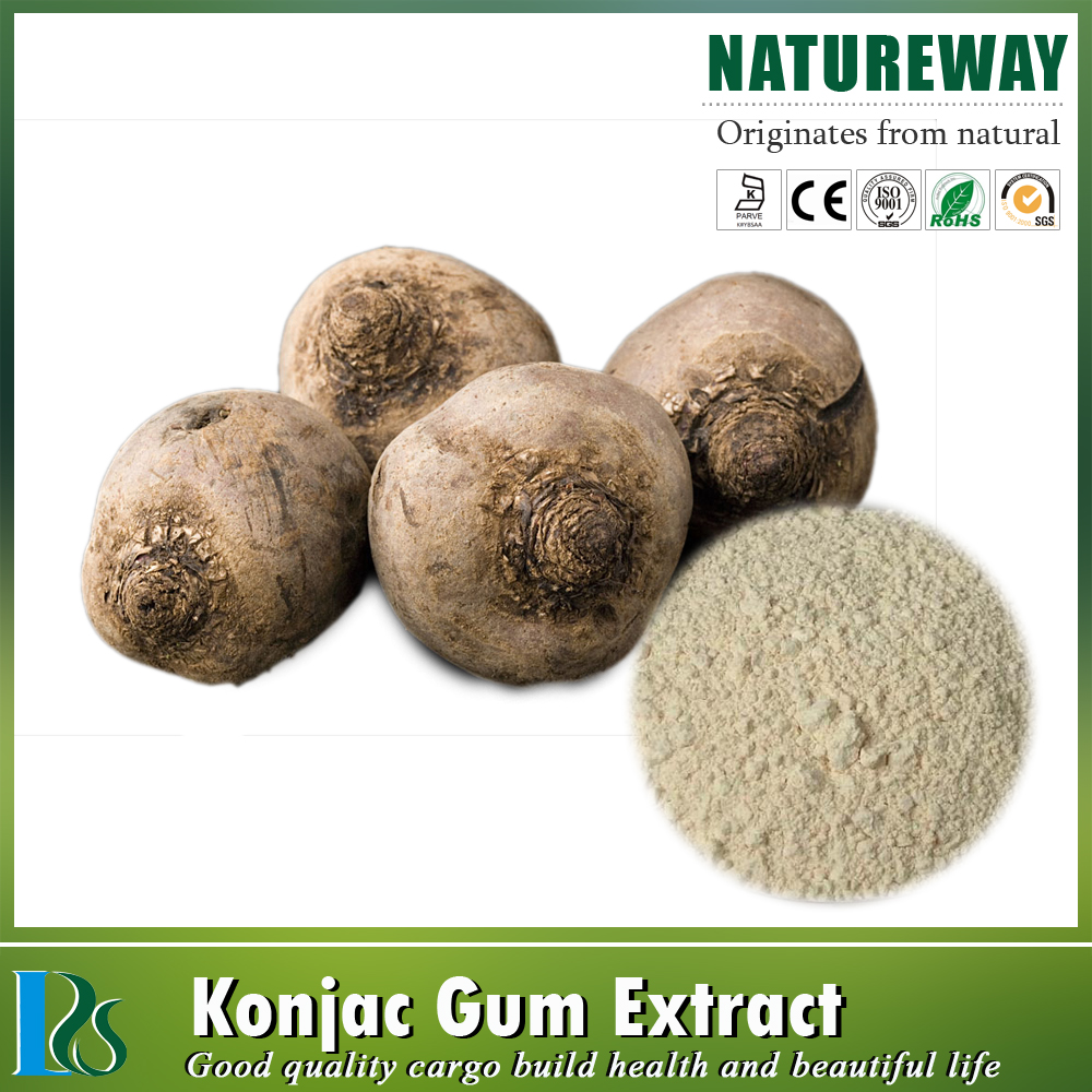 konjac root extract powder 90% glucomannan