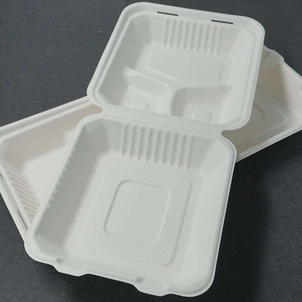 8 Inch Eco-friendly Bagasse Refrigerator Packing Box