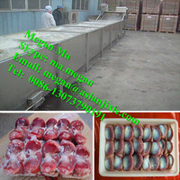 Frozen Meat Thawing Equipments Food Thawing