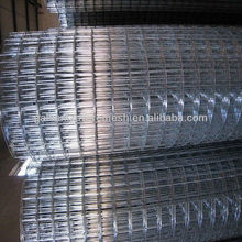 304/316 stainless steel welded wire mesh bird cage wire mesh