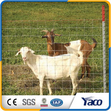 Hengshui Wholesale alibaba China CE&ISO9001 1.2m 1.5m height ,galvanized steel deer fence(pro manufacturer)