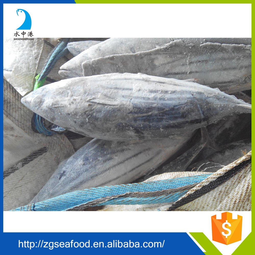 HACCP Seafood and canned skipjack tuna