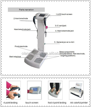 Latest equipment hot sale body analyzer machine