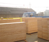 Top Quality timber beams for sale structural laminated veneer lumber (lvl)