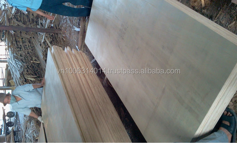 White face and back Canarium AA plywood exporting to UAE market