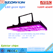 hydroponic led matrix light import cheap goods from china 300w