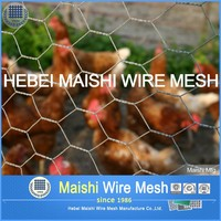 chicken coop hexagonal wire mesh,double twisted hexagonal wire mesh,electro galvanized hexagonal wire mesh
