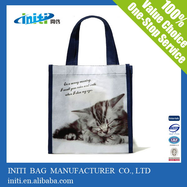 Unusual Cat Bag