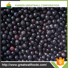 Exporting bulk IQF Frozen Fresh Blueberry