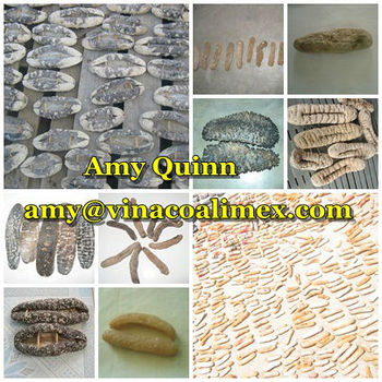 SUN DRIED SEA CUCUMBER