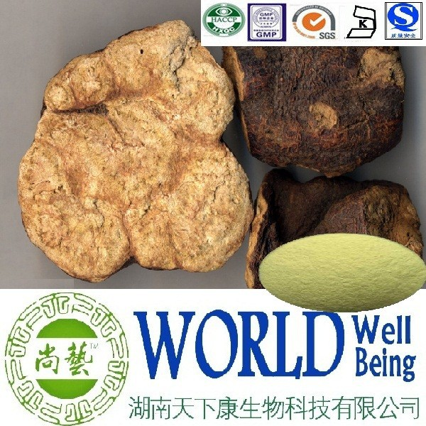 Hot sales plant extract Radix polygoni mulitiflori extract/Ratio 10:1/Reduce lipid peroxidation Free sample