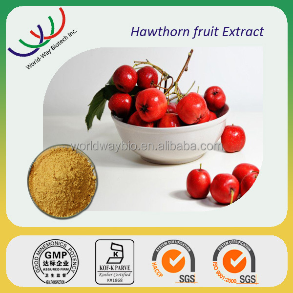 free sample HACCP KOSHER FDA certified China company pure natural top quality flavone hawthorn berry extract
