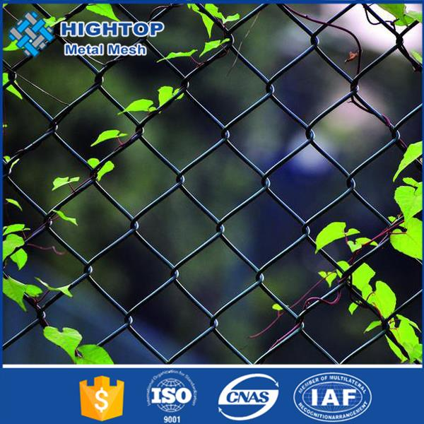 Good service high quality decorative chain linked fence/Cheap garden fence