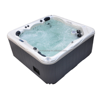 stainless jet swimming pool JCS-65 with feet massage jets