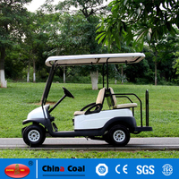 Mini gas powered golf cart for sale