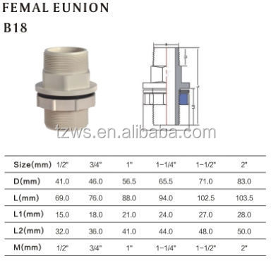 High Quality Water Supply Plumbing Materials Cpvc Male And Female Union