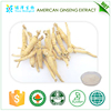 health care product ID test approved panax quinquefolium L American ginseng root extract 10% hplc