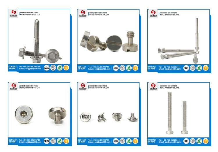 China Supplier Customized Production Stainless Steel Male And Female Sexy Bolt