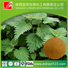 Manufacturer sales nettle extract beta-sitosterol