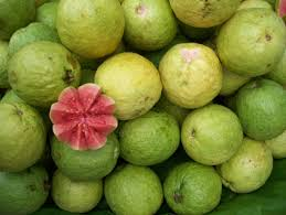 Guava Fresh Fruits