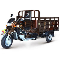 China BeiYi DaYang Brand 150cc/175cc/200cc/250cc/300cc 2013 new commercial tricycles for passengers