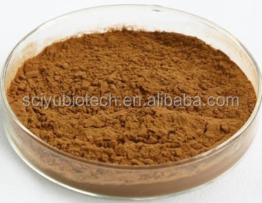 Pure Natural Yucca Root Extract Powder