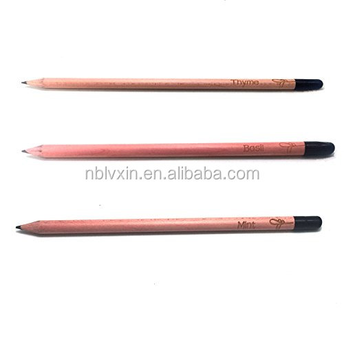 Natural Wood Pencil Seed Plant Pencil