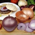 onion saver, onion storage containers