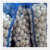 /product-detail/chinese-wholesale-natural-garlic-to-importers-60366759960.html