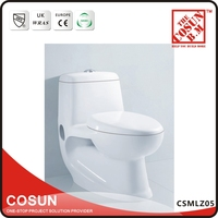 New Dual Flush Ceramic Siphonic Ceramic Toilet