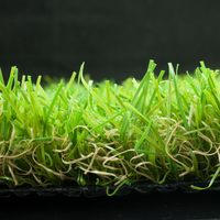 Quality Primacy Hotsell Home Artificial Grass