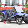 UTV 1000cc 1000w Electric UTV 2