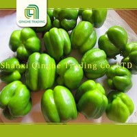 cheap yellow bell pepper best fresh delicious taste sweet capsicum (sweet pepper) from china