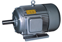 Automatic Competitive Price Y315M-8 100 Hp Dc Motor